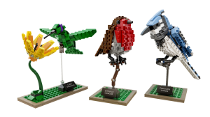 2015 LEGO Ideas 21301 Birds - Toysnbricks